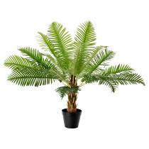 Искусственное растение в горшке ФЕЙКА артикуль № 502.341.72 в наличии. Интернет магазин IKEA Беларусь. Недорогая доставка и монтаж.