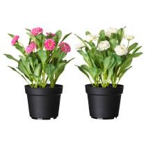 Искусственное растение в горшке ФЕЙКА разные цвета артикуль № 702.341.47 в наличии. Онлайн каталог IKEA Беларусь. Быстрая доставка и установка.