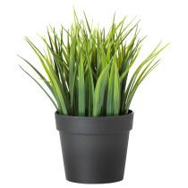 Искусственное растение в горшке ФЕЙКА артикуль № 803.719.59 в наличии. Интернет каталог IKEA Республика Беларусь. Быстрая доставка и монтаж.
