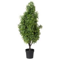 Искусственное растение в горшке ФЕЙКА артикуль № 103.634.15 в наличии. Интернет магазин ИКЕА РБ. Недорогая доставка и установка.